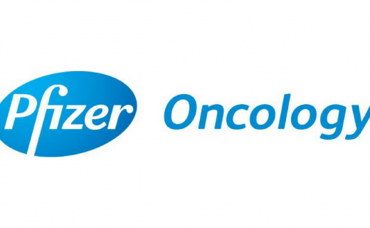Pfizer Awards BIG $1 Million Research Grant : Press Release 9 March 2016